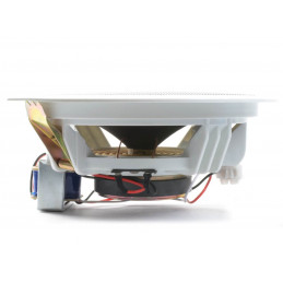 Power Dynamics CSPB8